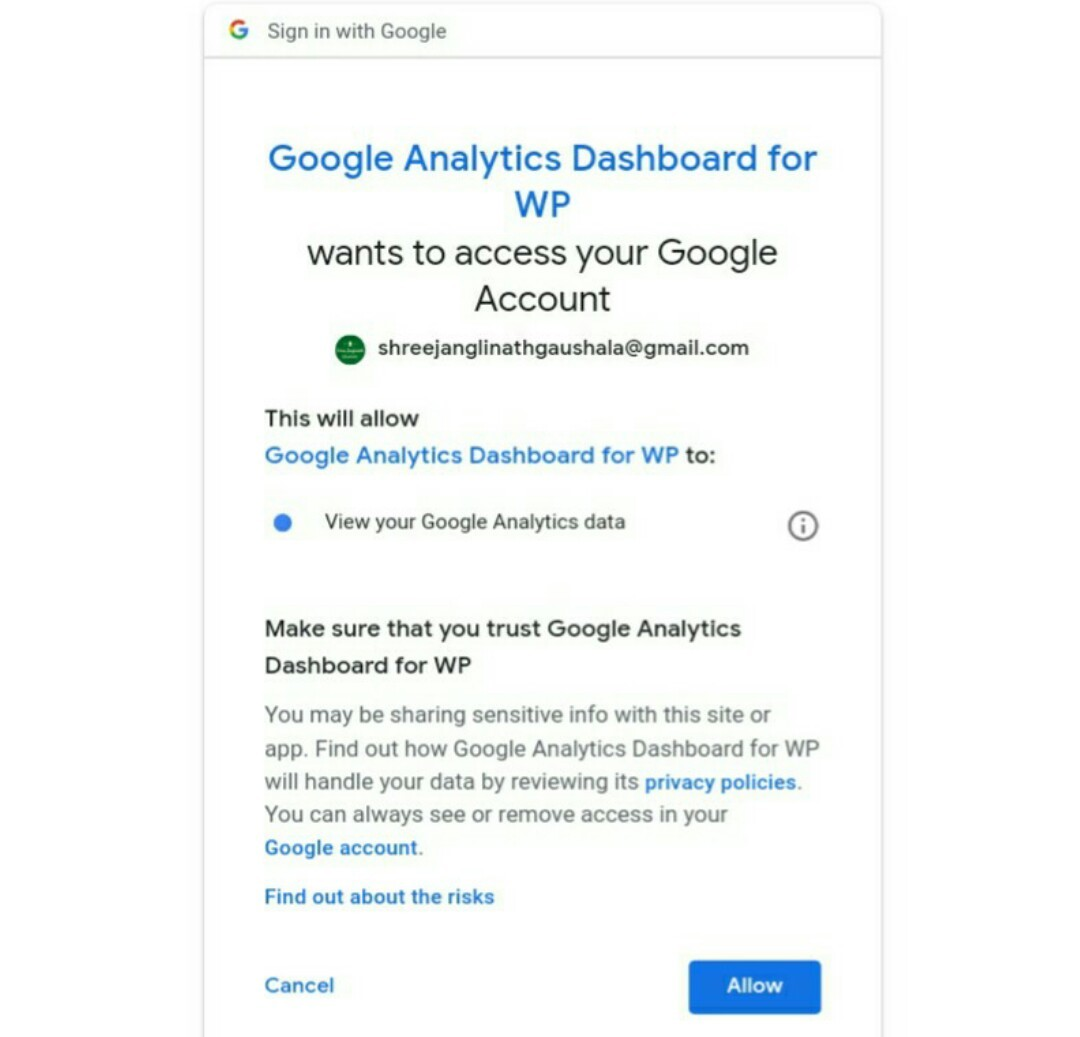 Allow Google analytics