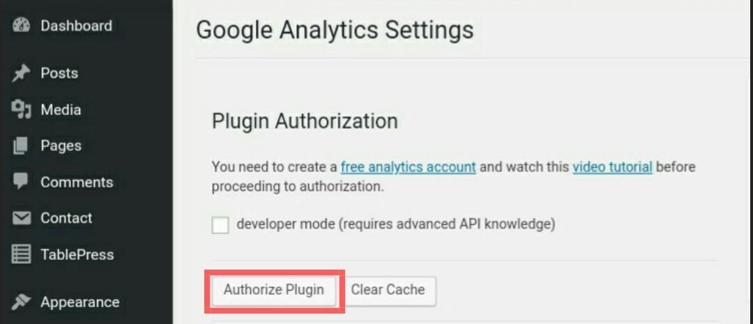 Google analytics pin