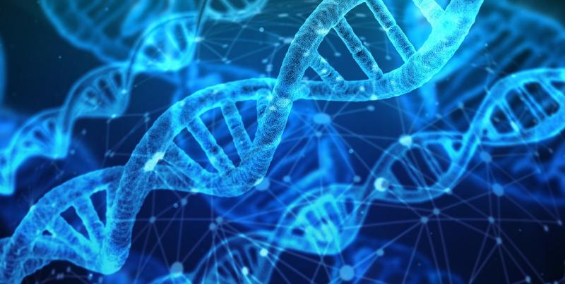 Geneticism