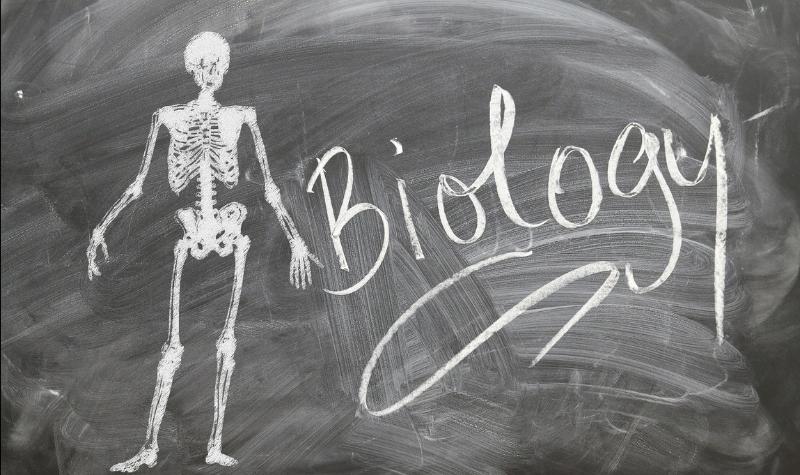 जीवविज्ञान सामान्य ज्ञान महत्वपूर्ण प्रश्न उत्तर