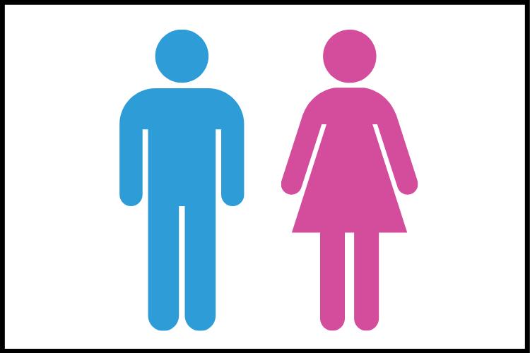 लिंग की परिभाषा, प्रकार और उदाहरण