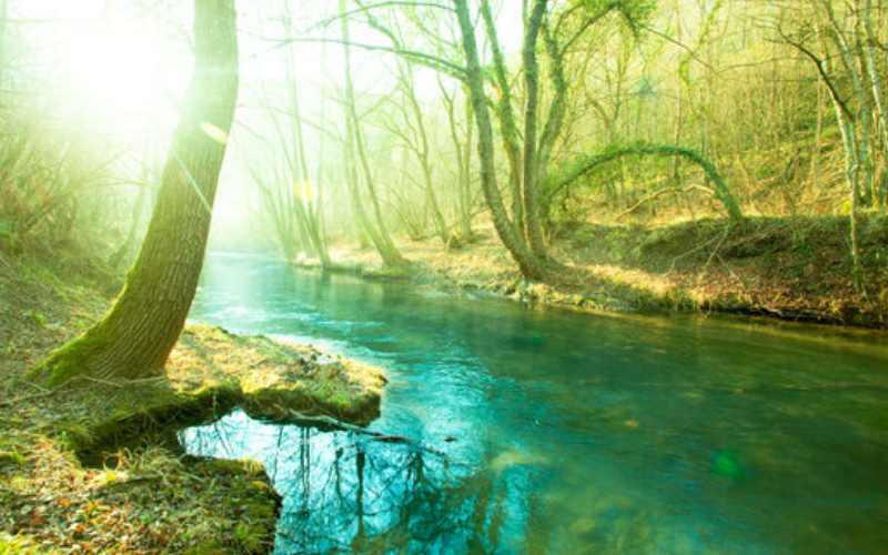 सतलज नदी