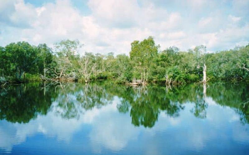 हुगली नदी