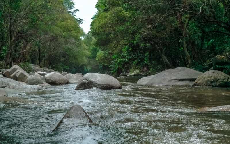 लूनी नदी