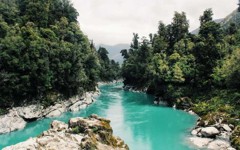 पद्मा नदी