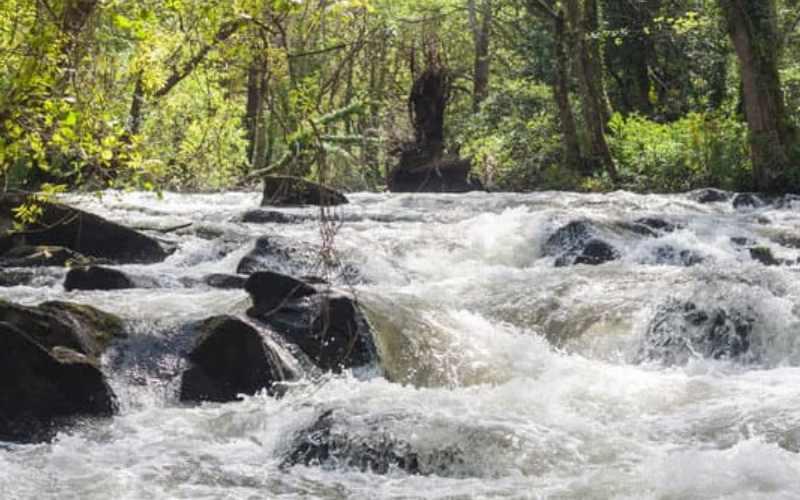 शिप्रा नदी